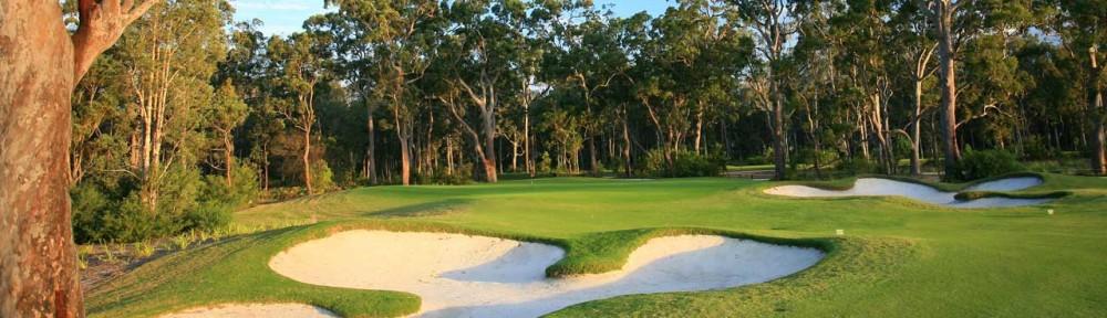 Newcastle Golf Courses